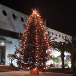 Árbol de Navidad 2020 Mundosol Quality